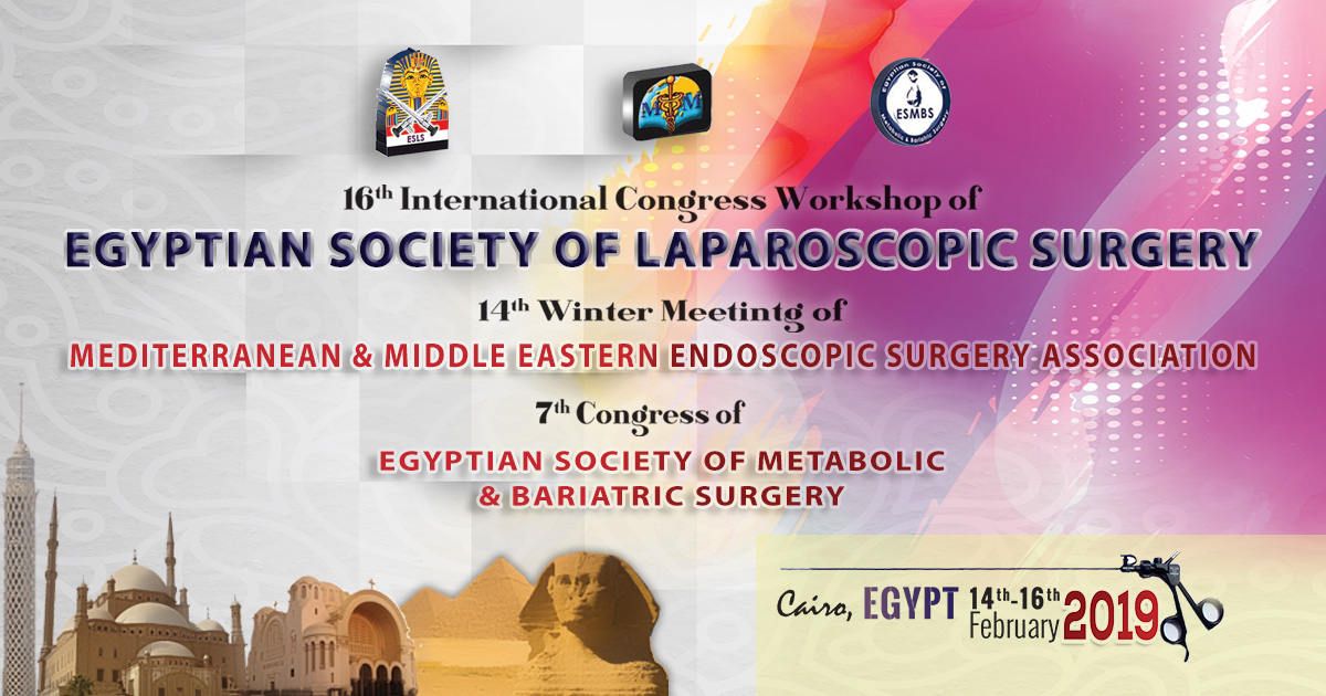 16th International Congress Workshop of Egyptian Society of Laparoscopic Surgery - ESLS